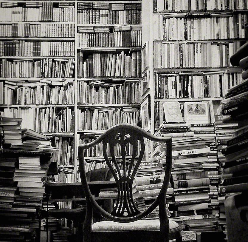 צילום: אמנון וינר