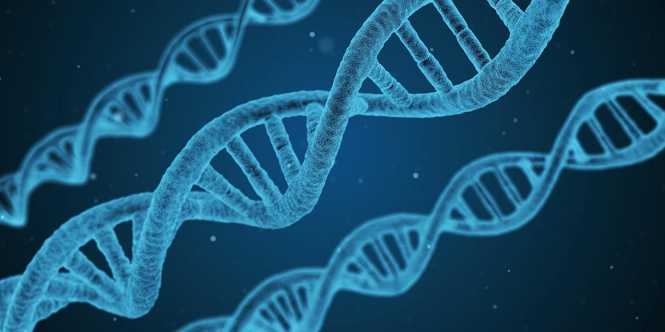 הדטרמיניזם הגנטי והבחירה החופשית