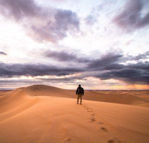 הסיפור שנשכח במדבר
